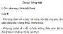 Soạn bài Ôn tập Tiếng Việt Ngữ văn 9 tập 1 - Ngắn gọn nhất