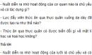 Câu hỏi thảo luận số 2 trang 82 SGK Sinh 8