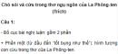 Soạn bài Chó sói và cừu trong thơ ngụ ngôn của La Phông-ten - Ngắn gọn nhất
