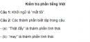 Soạn bài Kiểm tra phần tiếng Việt - Ngắn gọn nhất - Ngữ văn 9 tập 2
