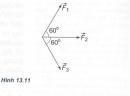 Bài 5 trang 63 SGK Vật Lý 10 Nâng Cao