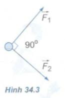 Bài 4 trang 163 SGK Vật lý lớp 10 nâng cao