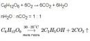 Bài 2 trang 37 SGK Hóa học 12