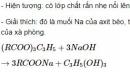 Báo cáo thực hành: Điều chế, tính chất hóa học của este và cacbohiđrat
