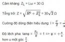 Bài 5 trang 79 SGK Vật lí 12