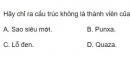 Bài 10 trang 217 SGK Vật lí 12