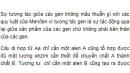 Bài 4 trang 45 SGK Sinh 12