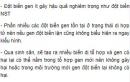 Bài 2 trang 117 SGK Sinh 12