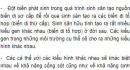 Bài 2 trang 212 SGK Sinh 12