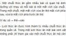 Bài 1 trang 194 SGK Sinh 12