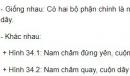 Bài C1 trang 93 SGK Vật lí 9
