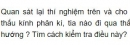 Bài C4 trang 120 SGK Vật lí 9