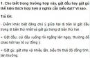 Soạn bài Tổng kết về từ vựng (tiếp theo) trang 158 SGK Ngữ văn 9