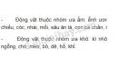 Bài 4 trang 129 SGK Sinh học 9