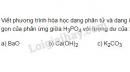 Bài 1 trang 53 SGK Hóa học 11