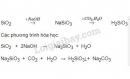 Bài 4 trang 79 SGK Hóa học 11
