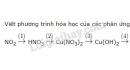 Bài 5 trang 45 SGK Hóa học 11