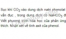 Bài 5 trang 193 SGK Hóa học 11
