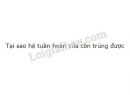 Bài 1 trang 80 SGK Sinh học 11