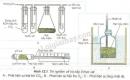 Quan sát hình 12.1 và trả lời các câu hỏi sau: Vì sao nước vôi trong ống nghiệm bên phải hình chứa hạt nảy mầm (hình 12.1 A) bị vẩn đục khi bơm hút hoạt động?