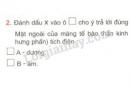 Bài 2 trang 116 SGK Sinh học 11