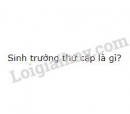 Bài 3 trang 138 SGK Sinh học 11