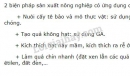 Bài 3 trang 142 SGK Sinh học 11