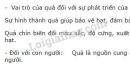 Bài 5 trang 166 SGK Sinh học 11