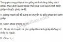 Bài 6 trang 162 SGK Sinh học 11
