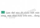 Bài C1 trang 4 SGK Vật lí 8