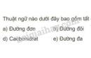 Bài 1 trang 22 SGK Sinh học 10