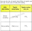 Bài 2 trang 91 SGK Sinh học 10