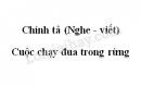 Chính tả bài Cuộc chạy đua trong rừng trang 83 SGK Tiếng Việt 3 tập 2