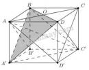 Bài 5 trang 114 SGK Hình học 11