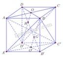 Bài 5 trang 119 SGK Hình học 11