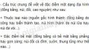 Bài 3 trang 48 SGK Địa lí 6