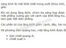 Bài 1 trang 179 SGK Vật lí 11