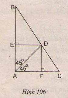 Hình 106 bài 81 trang 106 SGK Toán lớp 8 Tập 1