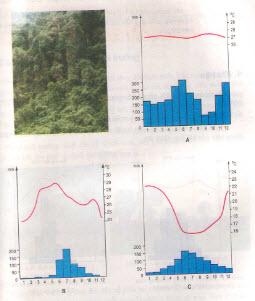 Câu 4 SGK Địa lý 7 trang 19