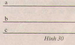 Hình 30 bài 41 trang 97 SGK Toán 7 Tập 1b