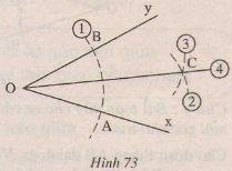 Hình 73 bài 20 trang 114 SGK Toán 7 Tập 1