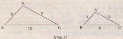 Hình 35 bài 29 trang 74 SGK Toán 8 Tập 2