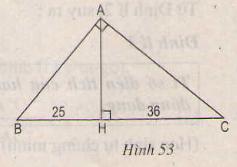Hình 53 bài 51 trang 84 SGK Toán 8 Tập 2