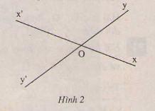 Hình 2 bài 1 trang 82 SGK Toán 7 Tập 1
