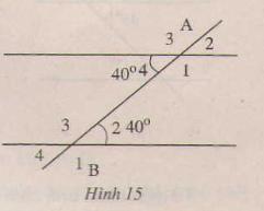 Hình 15 bài 22 trang 89 SGK Toán 7 Tập 1