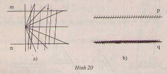 Hình 20 bài 30 trang 92 SGK Toán 7 Tập 1
