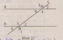 Hình 23 bài 36 trang 94 SGK Toán 7 Tập 1