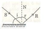 hình 4.6 - bài 4.3 trang 17,18 VBT vật lí 7