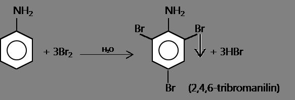phản ứng thế Brom của anilin