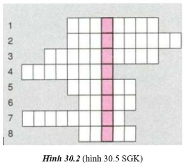hình 30.2 - bài 30 trang 115 VBT vật lí 7